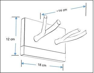 wood double hook rack